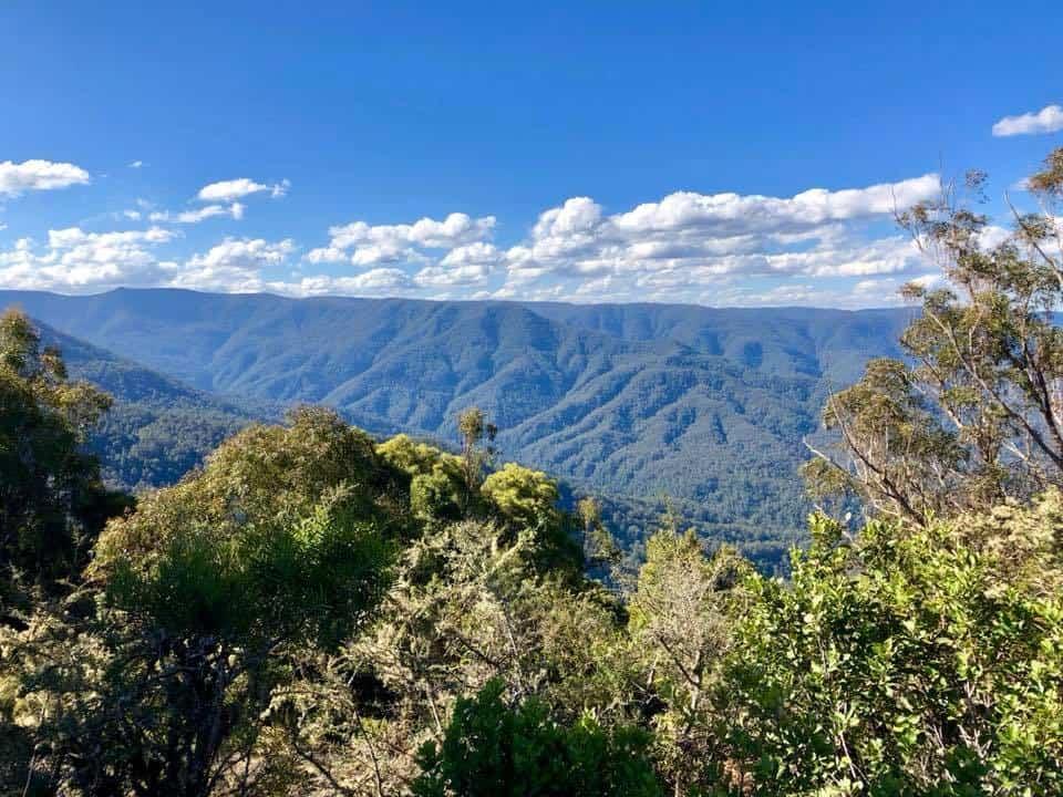 Barrington Tops Day Trip